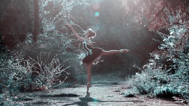 ballet-pose-1725207_640