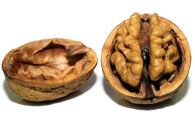 walnut-3072681_640